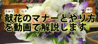 献花のマナーとやり方を動画で解説します